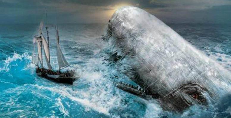 Moby Dick Kitap Soruları ve Cevapları