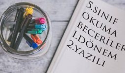 5.Sınıf Okuma Becerileri Yazılı Sınavı