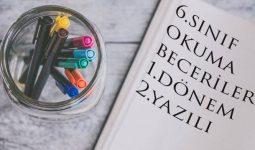 6.Sınıf Okuma Becerileri Yazılı Soru Örnekleri
