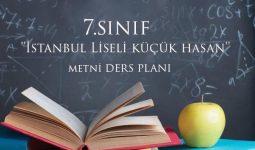 7.Sınıf İstanbul Liseli Küçük Hasan Metni