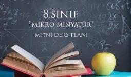 8.Sınıf Mikro Minyatür Metni