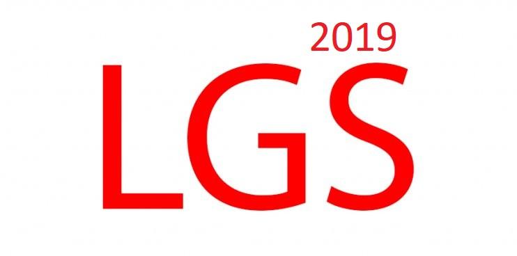 LGS 2019 Soruları