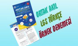Türkçe Ortak Akıl LGS Deneme Örneği Kapak