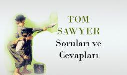Tom Sawyer'ın Maceraları Soruları