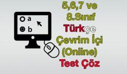 Online Türkçe Testleri Çöz