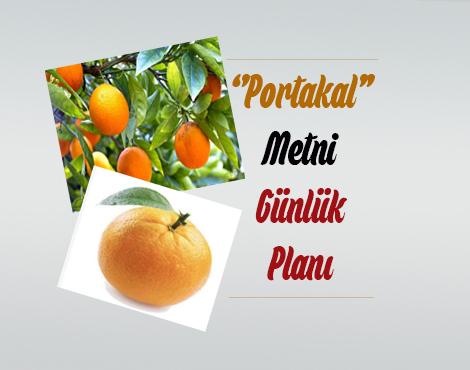 Portakal Ders Planı