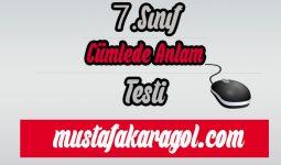 7.Sınıf Türkçe Cümlede Anlam Testi