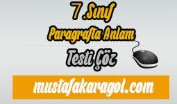 7.Sınıf Türkçe Paragrafta Anlam Testi