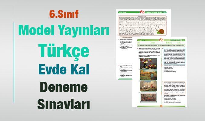 Türkçe 6.Sınıf Deneme Sınavı