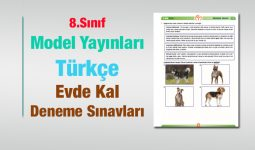 8.Sınıf Türkçe Evde Kal Deneme Sınavı