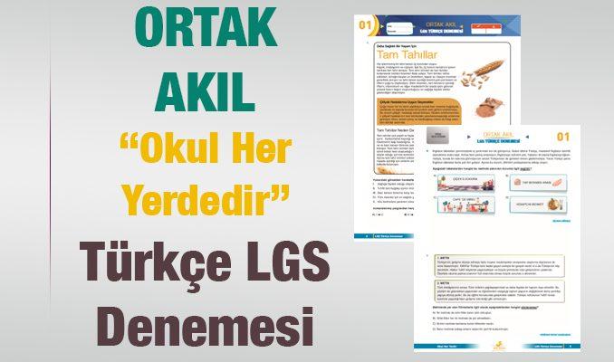 Ortak Akıl-Okul Her Yerdedir LGS Türkçe Denemesi